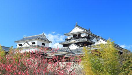日本100名城にも選ばれた松山城