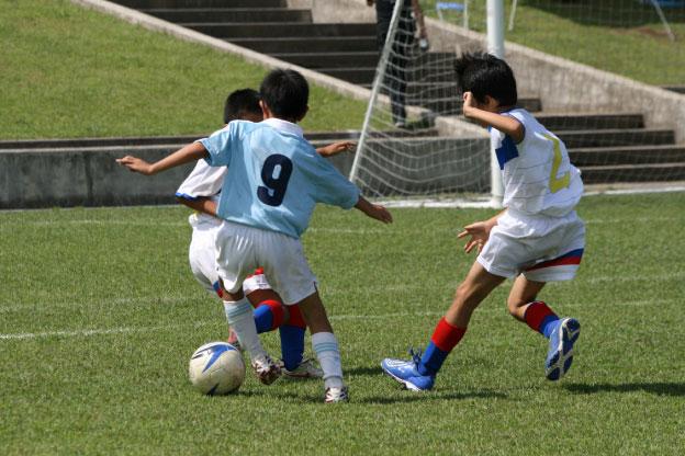 スポーツ・文化系合宿